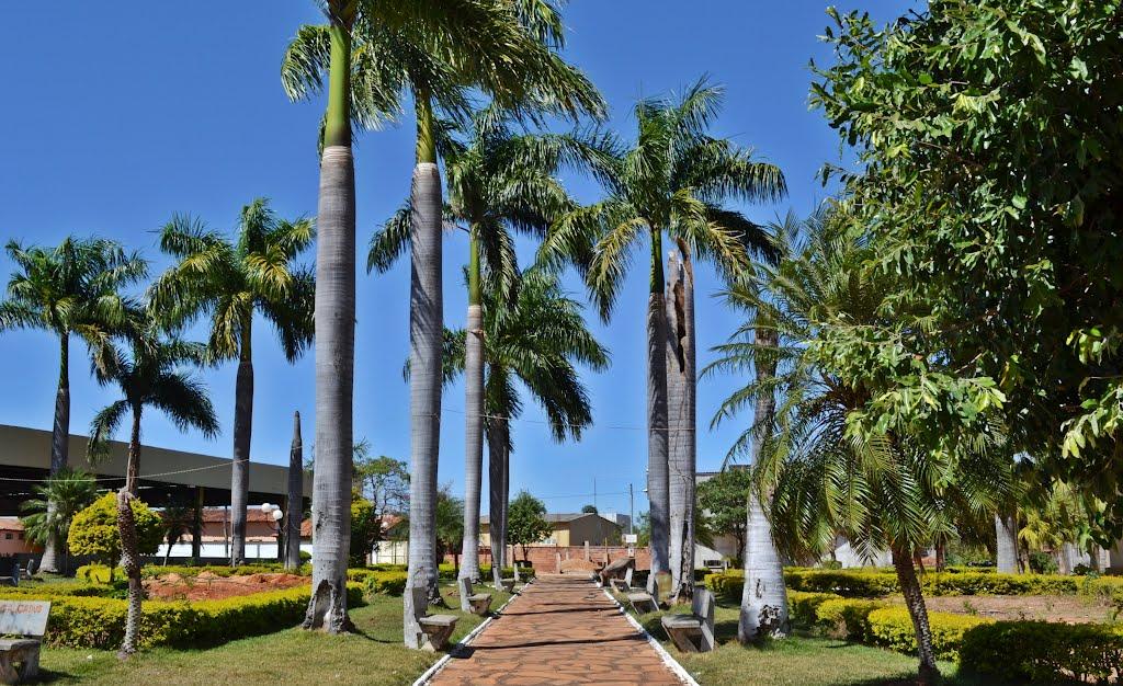 Fazenda Nova Goiás fonte: cidadesdegoias.com.br